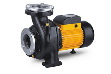 চীন Single stage Nfm Series Electric Centrifugal Pump , Pool High Volume Electric Water Pump কারখানা